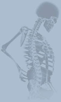 Chiropractic admissions essay